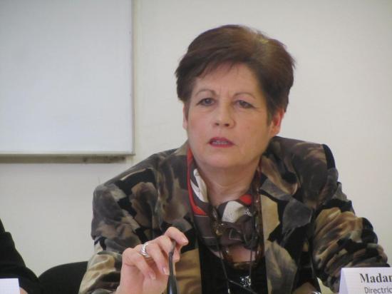 SISM 2013